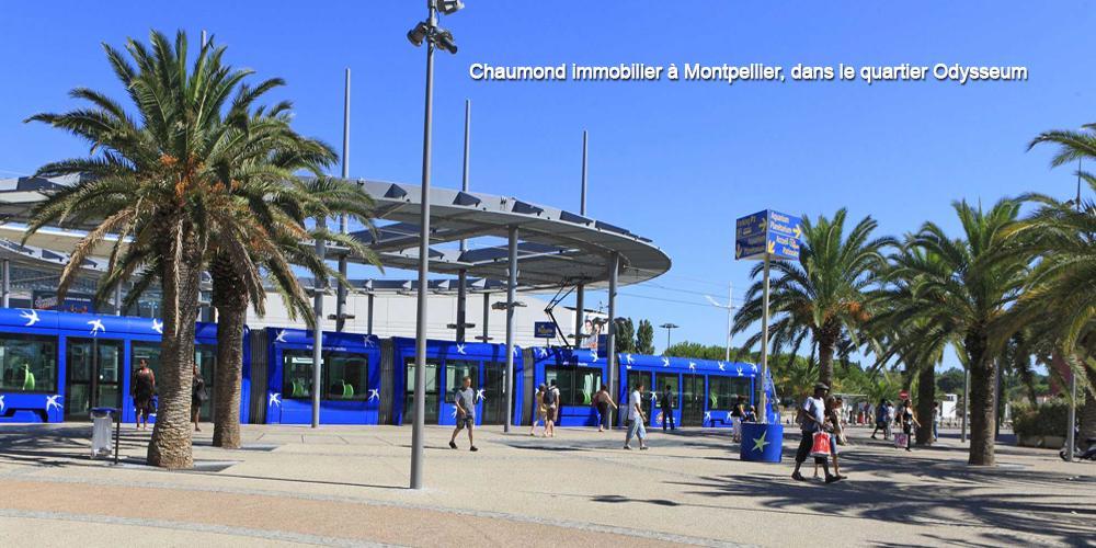 Chaumond immobilier à Montpellier, dans le quartier Odysseum